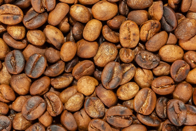 볶은 artesanal 미식가 커피 콩 패턴