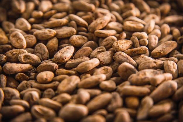 Жареные какао-бобы из натурального шоколада на острове роатан. гондурас