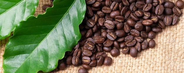 Roasted coffee bean on linin sack
