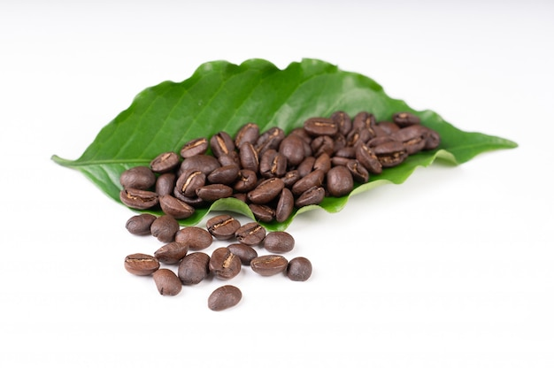 Roasted coffee bean with leave on white