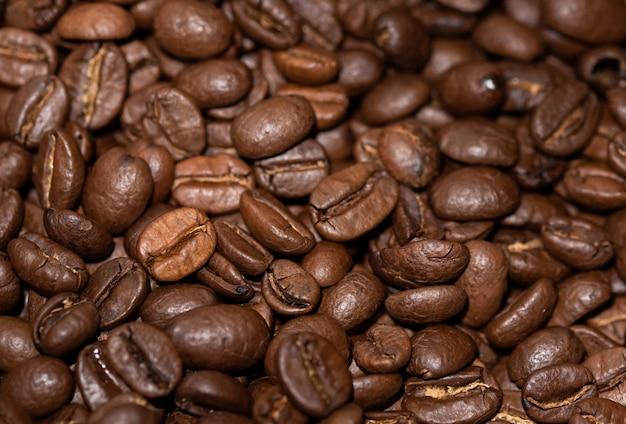 10+ Kona Coffee Images | Free Download