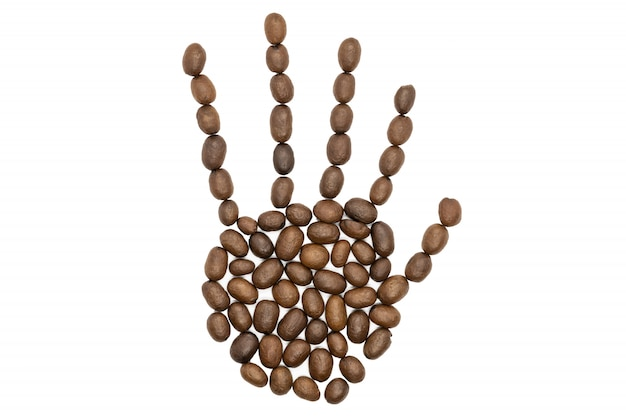 Roasted coffee beans, human hand shape concept, isolated.