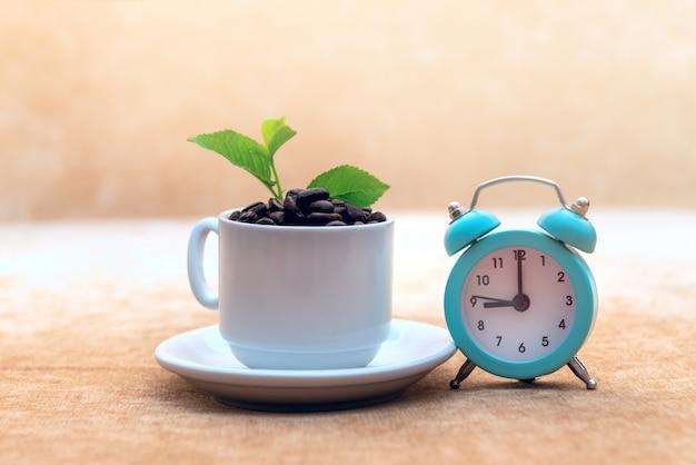 Жареные кофейные зерна в белой чашке зеленые листочки и будильник.