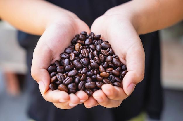 손에 볶은 커피 콩