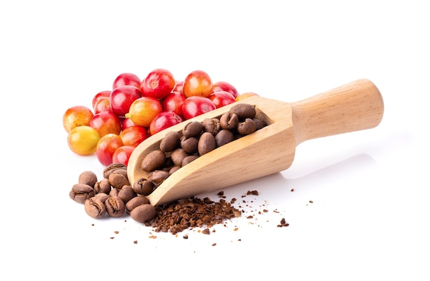 Roasted coffee beans in wood scoop isolated on white