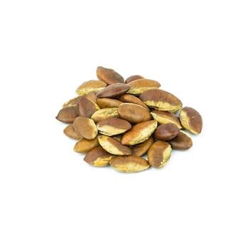 Roasted kayu seeds on white background (irvingia malayana benn)