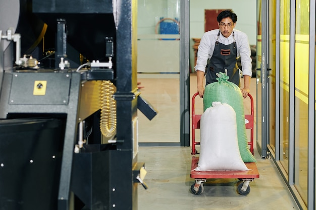 Roastery worker pushing cart with sacks of coffee beans to big modern roaster