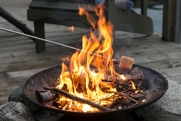 Roasting a marshmallow over a campfire, lake of the woods, ontario, canada