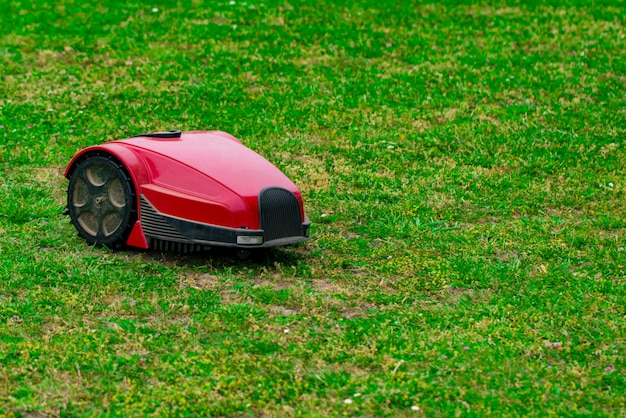 Robot lawn mower on summer meadow in the garden with copy space.