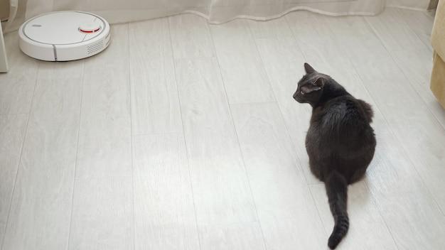 Робот-пылесос проезжает по полу, серый кот смотрит на него.