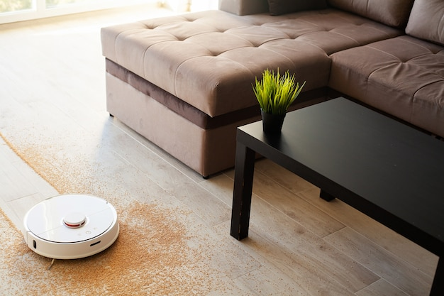 Robot vacuum cleaner performs automatic cleaning of the apartment