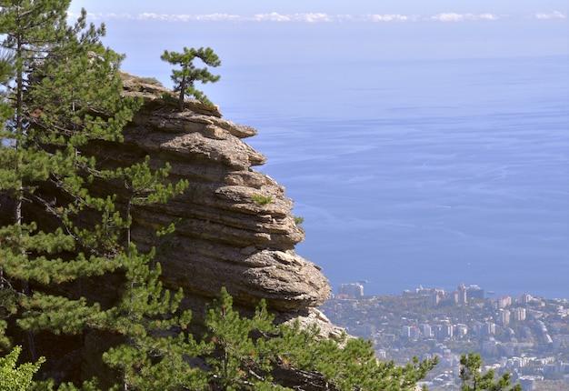 海岸の上の岩