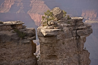 Rock and the Canyon