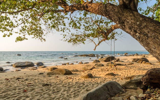 Rock beach with wooden swing in thailand