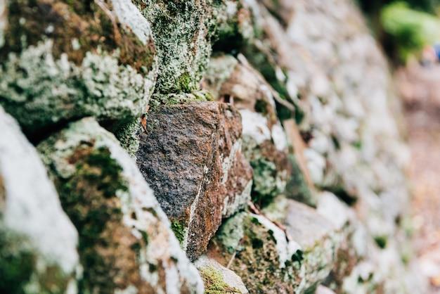 바위 장식 벽 배경