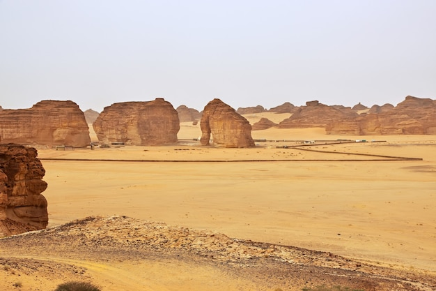 サウジアラビアのアルウラ近くの砂漠のロックエレファント