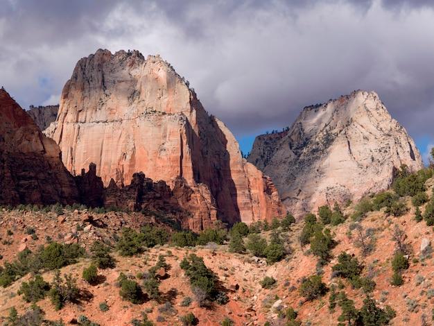 風景、アメリカ、ユタ州、シオン国立公園の岩の形成