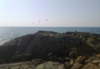 Rock in front of sea