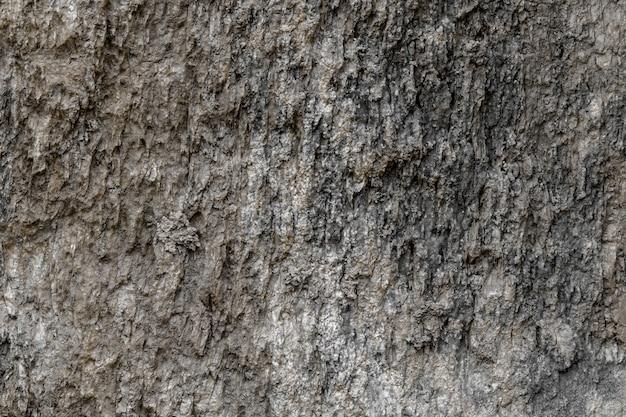 岩層表面樹皮テクスチャ背景