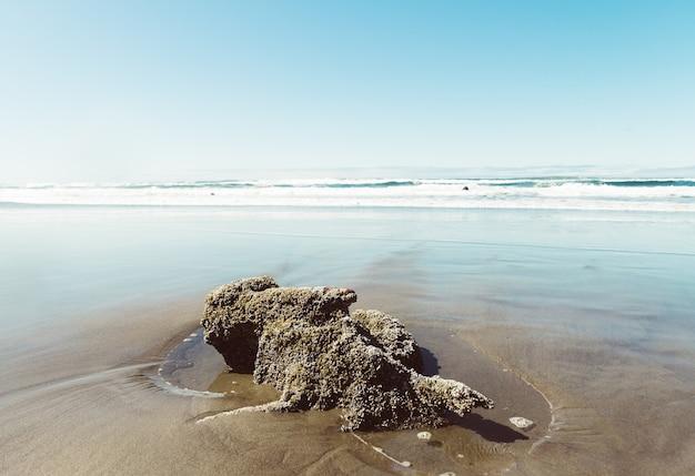青い空の下のビーチでロック