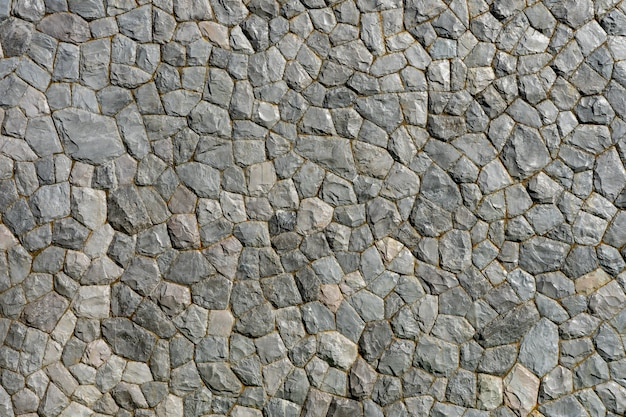 Rock pattern gray color and mos plant of modern style design decorative uneven cracked