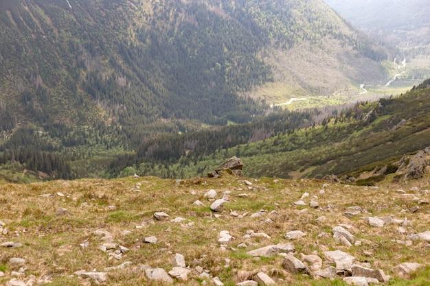 山のロックピーク、夏のタトラ山脈