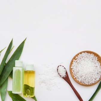 Rock salts; leaves and spray bottles on white background