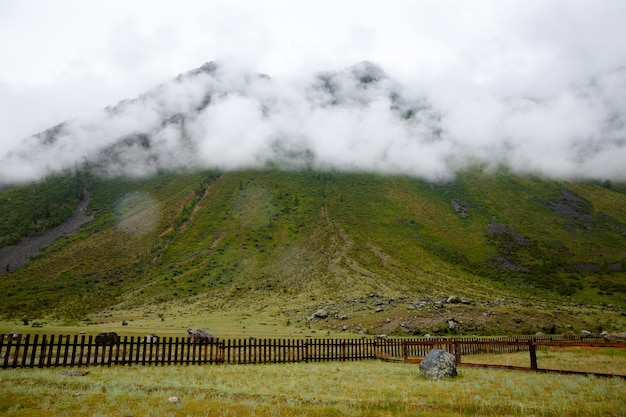 Rock shrouded in fog, covered with green grass, wooden fence under mountain