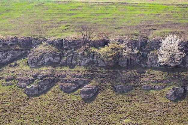 Скальная стена каньона реки смотрич в каменец-подольском, украина