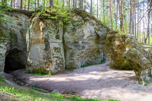 晴れた日の美しい春の森の砂岩の崖の大きなエリタの洞窟の一般的なビューと岩または