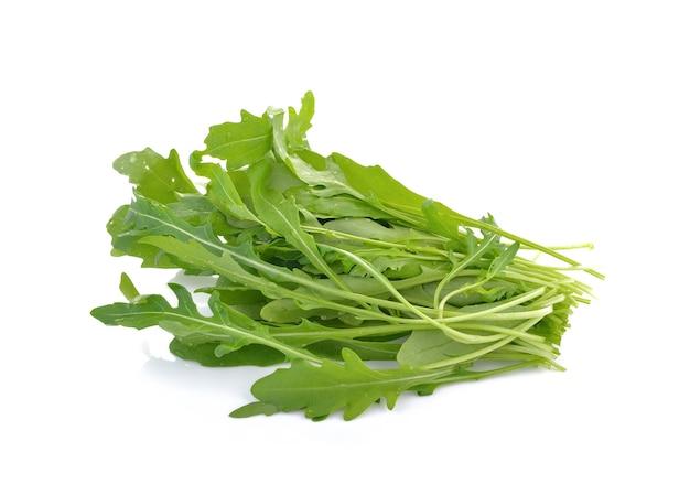 白で隔離されるロケットレタスの葉または甘いルッコラサラダ