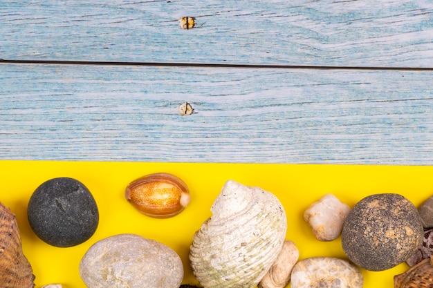 바위와 조개 해변 개념