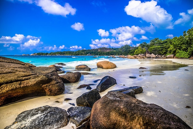 세이셸의 praslin에서 햇빛 아래 녹지와 바다로 둘러싸인 해변의 바위