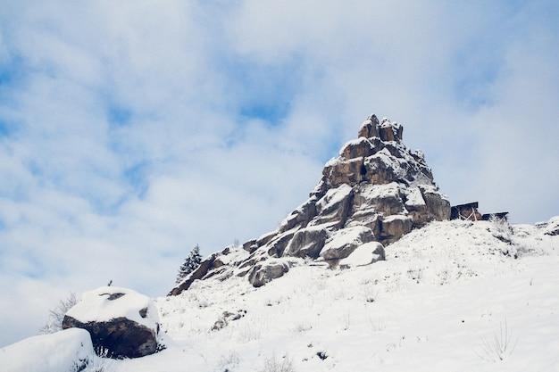 雪に覆われた岩。木は凍っています。背景用。