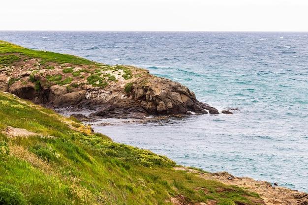 뉴질랜드 해안 근처의 바위
