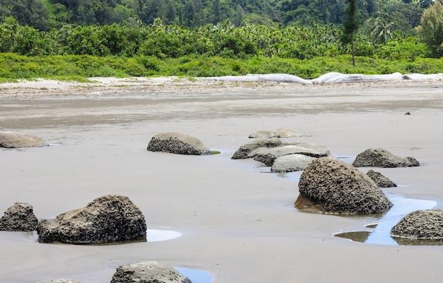 Скалы на песчаном морском пляже возле леса