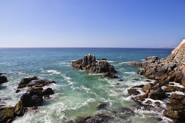 칠레의 비나 델 마르 해안에있는 바위