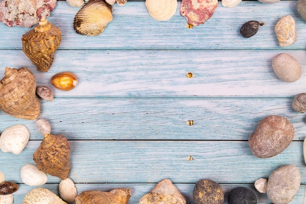 Rocks and shells on a blue wooden background.marine theme
