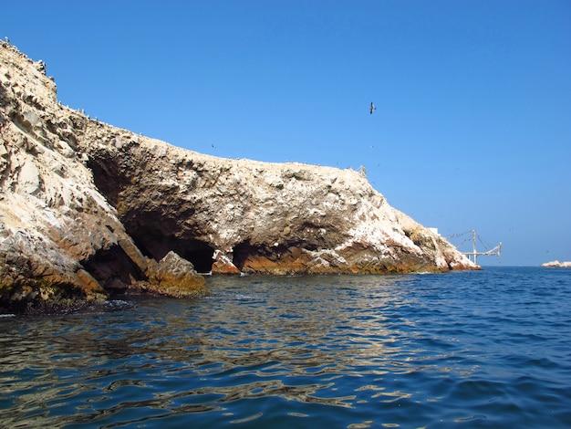 ペルーのパラカス、太平洋の動物の岩
