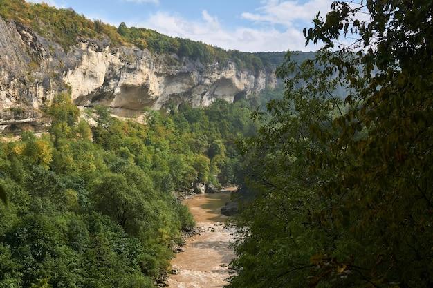 가을 숲 사이 바닥에 진흙 투성이의 산 강이 있는 바위 협곡