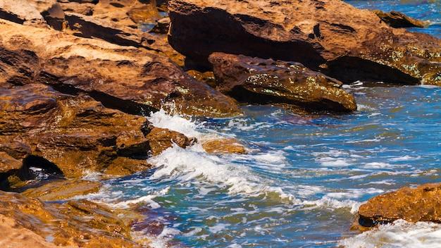 澄んだ水と岩の多い海岸