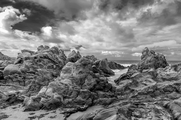 岩の多い海岸の風景