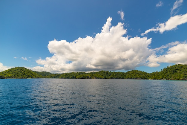 Rocky coastline covered by dense lush green jungle in the colorful sea of the remote togean islands