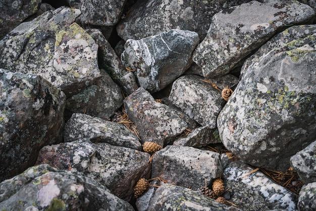 大きな珪岩の岩場