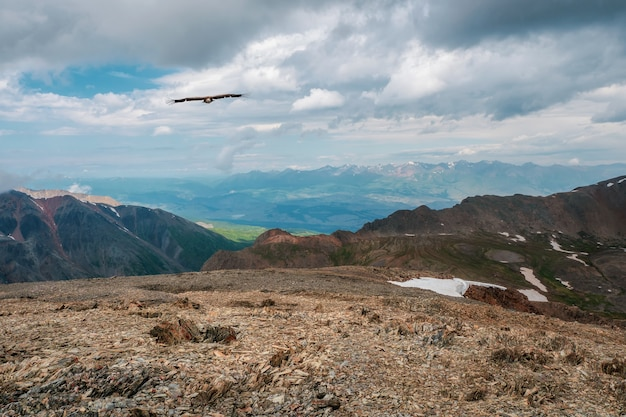 Rocky mountain valley with a flying bird. highland valley among snow-covered mountain range and pointy peak under blue sky. atmospheric mountain scenery.