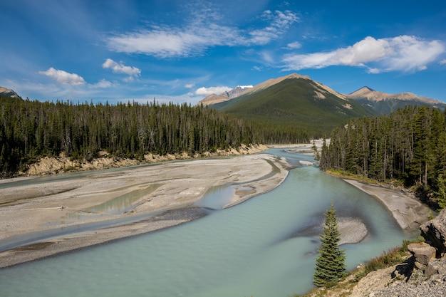Rocky mountains. canada, alberta, banff national park, icefields parkway sunwapta river