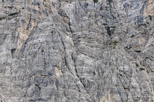 アルプスのロッキー山脈