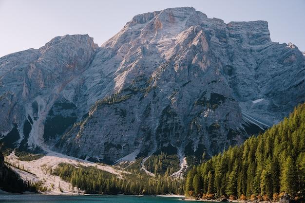 Скалистые горы с зелеными лесами на берегу озера брайес