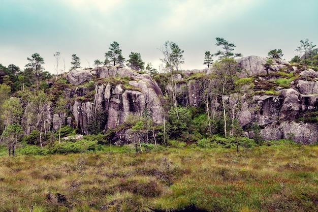 緑の草と岩が多いノルウェーの山々