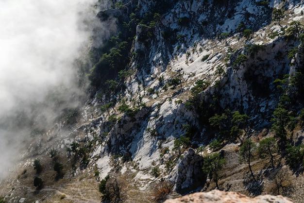 안개 속에 소나무가 무성한 바위 능선, 높은 산에서 바라보는 전망, 레크리에이션, 관광, 명상, 명상, 자연의 아름다움